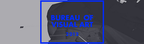 Bureau of Visual Art