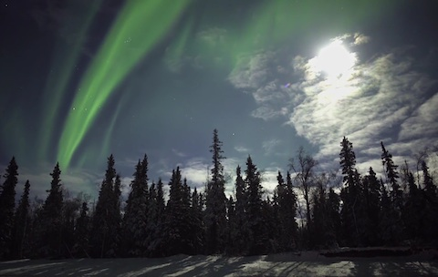 Real Time Northern Lights