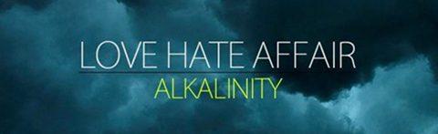 Official Love Hate Affair
